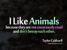 Google Image Result for http://inspirationboost.com/wp-content/uploads/2012/08/99-animals-not-consciously-cruel-and-dont-betray-each-other.png