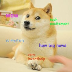Such News, Very InventHelp. Coming Monday @ 2PM EST. (Click the PIN for more info!) #Doge #DogeCoin #Invention #InventionNews