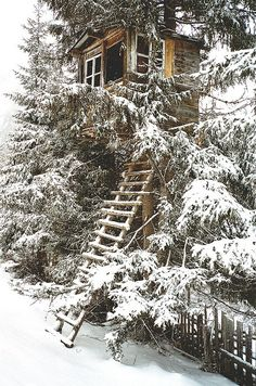 tree house in the snow…That ladder would be tricky but I'm sure there's a roaring fire, a good book and some wine awaiting us.