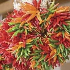 Chile Weather | Spice up your decor with wreaths made out of bright, ornamental chiles. Use a single color of chiles for a more modern, monochromatic look, or mix up the colors for added drama. | SouthernLiving.com