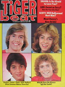 Tiger Beat Posters I had these all over my room - mostly with these guys!!!