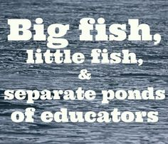 "Regardless of your place in the online education ""ponds"" - we all need to work together to become one big ""ocean"" of information to help all teachers and students be successful!"
