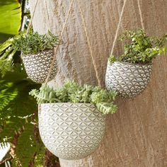 Prettier planters. Filled with succulents or flowers, these patterned Hanging Ceramic Planters are easy to hang from branches or walls.