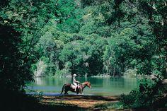 Dunk Island Resort,Queensland,Australia