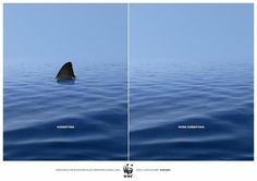 WWF Animal #Marketing #Advertising #Adv