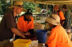 Tom North (left) teaches Roslan Sani and Adijah Bingham the float test, to determine seed viability on Christmas Island