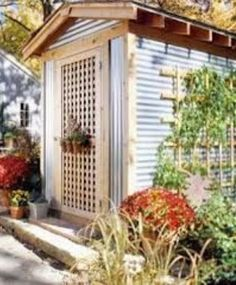 Garden shed with corrugated metal. Maybe do this on the outside of the chicken coop?