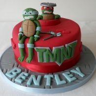 Teenage Ninja Turtles Cake