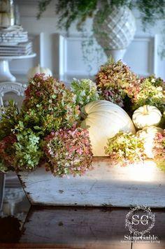 centerpiec, flower decorations, snuggl, hydrangea, white pumpkins, flowers garden