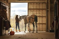 Autumn Horse Care Checklist