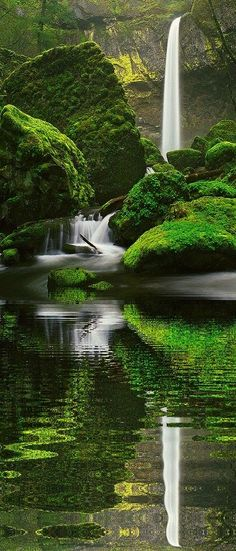 oregon, green, reflection photography, waterfall, road trips