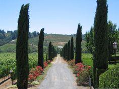 Ferrari-Carano Vineyard and Winery, Sonoma County, California