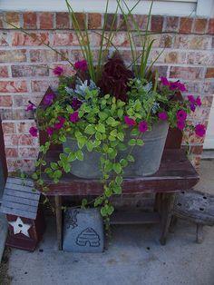neat arrangement for galvanized tub for next summer