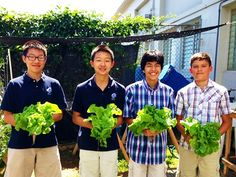 Check out MPX, a completely project-based curriculum that fulfills the ninth grade requirements for biology, mathematics, social studies, and language arts using a school garden!