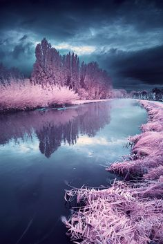 http://www.thisiscolossal.com/2012/12/the-surreal-infrared-photography-of-david-keochkerian/