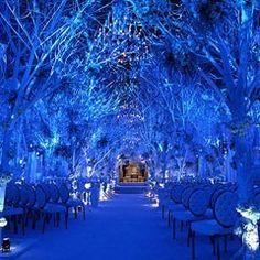 Traumwald in Blau