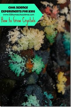123 Homeschool 4 Me: Science Experiments for Kids – How to Grow Crystals. Growing crystals for rock and minerals lesson or unit.