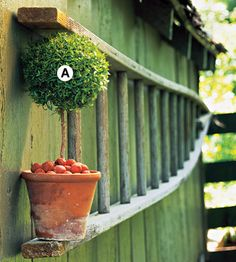 love the idea of using an old ladder for a shelf in the garden
