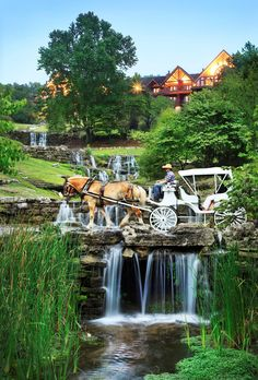 Big Cedar Lodge (Resort) in Branson, Missouri, USA. Can't imagine I'd ever want to go there, but this could tempt me.
