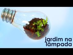 Jardim na lâmpada (como fazer um terrário em uma lâmpada) - YouTube
