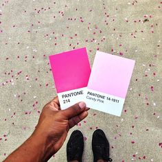 Artist Matches Pantone Swatches to Everyday Life