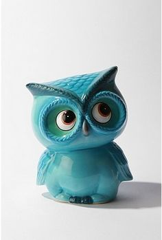 cute little turquoise owl