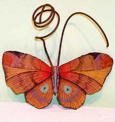 Bedspring Moth