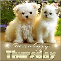 123 happy Thursday