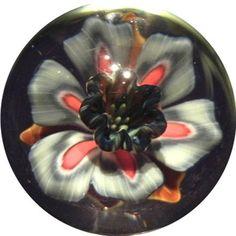Contemporary Art Glass Marble - Black Orchid - John Kabuki - Marblealan