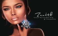 Zenith zenith, laccessoir