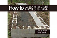 raised-garden-013114