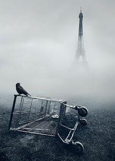 Love this photo!!