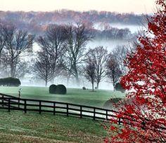 Morning fog over Middleburg in autumn   Salamander Resort & Spa   Middleburg, Va.
