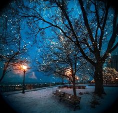 A Snowy Night in St. Paul, Minnesota. Sometimes winter can be incredibly beautiful. #Minnesota #snowy #night