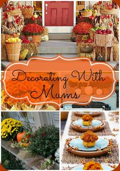 13 Easy and Inexpensive Fall Decorating Ideas!