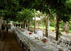 Outdoor Wedding Seating