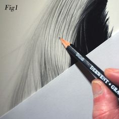 Graham Bradshaw gives top tips on drawing hair