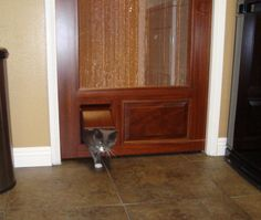 Custom cat door in mahogany, stained, with copper screen used as a sliding pocket door - Coppa Woodworking Wood Screen Doors and Wood Storm Doors - Customer Photo Gallery