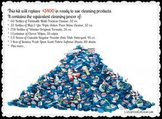 Get Clean Starter Kit - Save Your Money, Save Your Health, Save Our Planet...