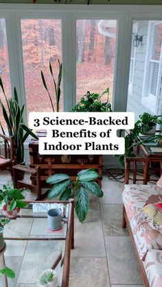 Add some greenery to your home for some great emotional and physical health benefits!