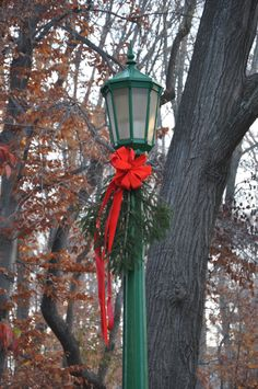 Nov. 15, 2012. The seasons they are a changing around campus as this decorated lamp post can attest. Photo by Mark Land.