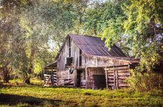 2014 texa, barn calendar, texa barn, texasthi barn