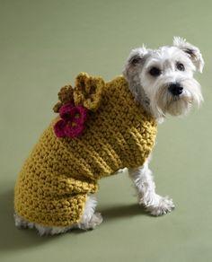 crochet flowers, small dogs, sweater patterns, dog sweaters, crochet sweaters