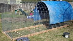 Moveable rabbit tractor for pastured rabbits.  They eat a mix of oats/barley/sunflower seeds + free choice alfalfa and minerals, and all the pasture they can eat while moved daily.