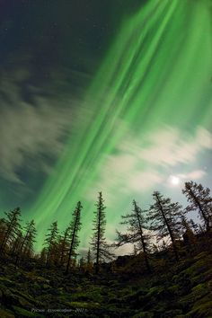 Auroras photographed from Siberia on Sept. 17th, 2011, by Ruslan Ahmetsafin of Aykhal, Siberia.