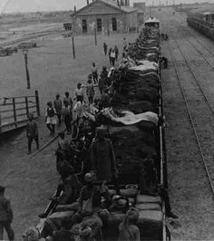 Bengal lancers unit horses are transported in open rail cars during the Boxer Rebellion, 1898-1900.
