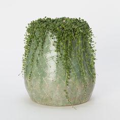 Terrain emerald scale pot