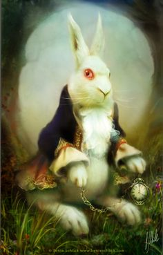 *WHITE RABBIT ~ Alice in Wonderland