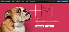 Marqeta homepage header by Duncan/Channon, via Flickr