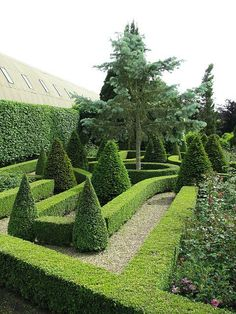 Topiary & Parterre & Hedge
